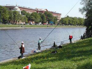 Рыбалка на Неве