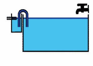 Протока, или аквариум с минимальным уходом