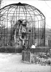 куполообразный вольер «Орлиная горка»