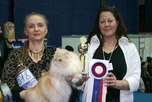 Всемирная выставка кошек