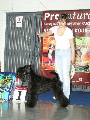 Всероссийская выставка собак всех пород