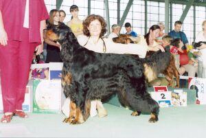 """Международная выставка собак """"Белые Ночи - 2004"""""""
