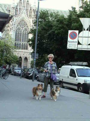 Выставка собак Евро-Дог-Шоу
