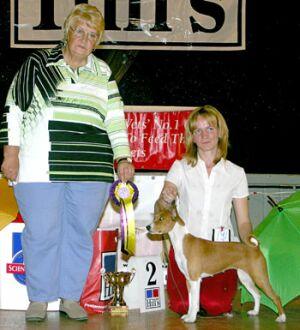 выставка собак всех пород Сертоловская осень