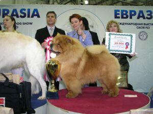 выставка собак Евразия - 2005