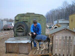 Приют для собак в Старой Деревне