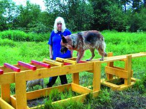 собаки спасатели МЧС Северо-западного региона