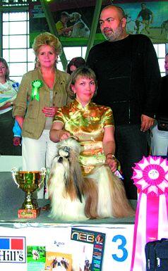 Международная выставка собак Белые ночи