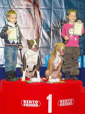 Pit-dog show