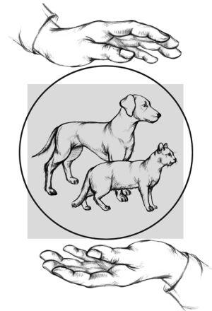 NaVita, пищевая добавка для собак и кошек