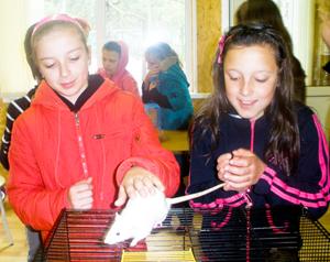 Дети и декоративные крысы